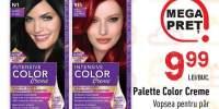 Vopsea pentru par Palette Color Creme