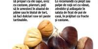 Castane comestibile