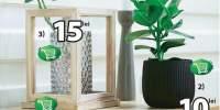Reducere de pana la 50% la obiectele decorative