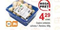 Ciuperci ambalate calitatea I, Romania