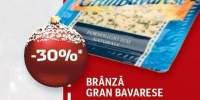 Branza Gran Bavarese Delaco