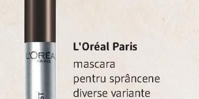 Mascara pentru sprancene L'Oreal Paris