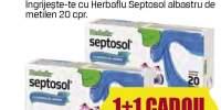 Herbaflu - raceala si gripa