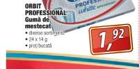 Orbit Professional guma de mestecat