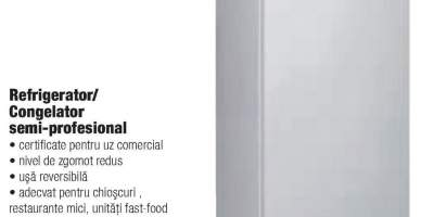 Refrigerator/ Congelator semi-profesional