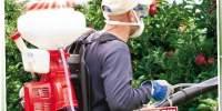 Atomizor motor Variolux + fungicid cadou