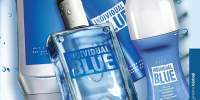 Set Individual Blue