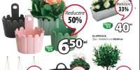 Reducere intre 20-50% la toate ghivecele de flori