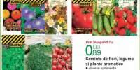 Seminte de flori, legume si plante aromatice