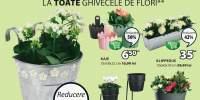 Reducere intre 25-50% la toate ghivecele de flori!