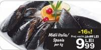 Midii Italia/Spania