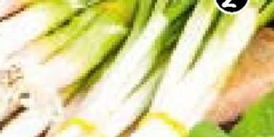 Ceapa verde