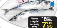 Macrou congelat 200/400g