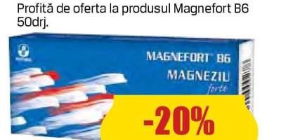 Magneziu B6