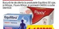 Tratamente stare de bine/ afectiuni circulatorii Equlibra/ Fluxiv