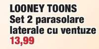 Looney Toons set 2 parasolare laterale cu ventuze