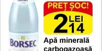 Apa minerala carbogazoasa