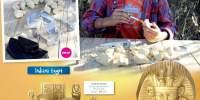 Egypcian Dig Joc dezgropat comori