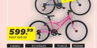 BIcicleta pentru copii X-Fact Joker/MTB Queen 24