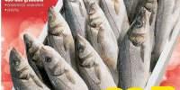 Biban de mare 400 - 600 g/bucata