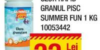 Clor rapid granule piscina Summer Fun 1 kg