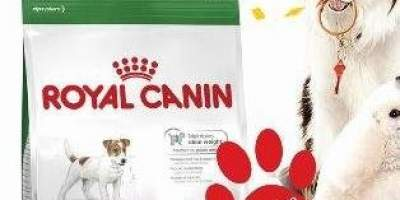 Royal Canin Hrana uscata caini Mini Adula 10 kg