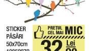 Sticker pasari 50x70 centimetri