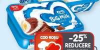 Big Milk inghetata vanilie/ciocolapte