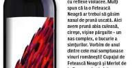 Cupaj de Feteasca Neagra si Merlot Crama Liliac