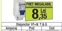Disjunctor 1P+N T&G