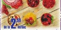 Tarta fructe/ citron/ capsuni/ zmeura/ visine/ coacaze Cora