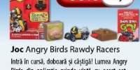 Joc Angry Birds Rawdy Racers