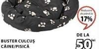 Culcus caine/pisica Buster