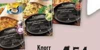 Punga pui tigaie Knorr