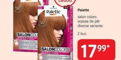 Palette salon Colors vopsea de par