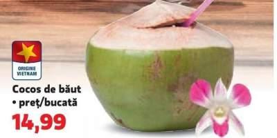 Cocos de baut