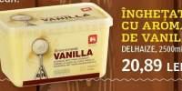 Inghetata cu aroma de vanilie Delhaize