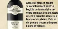 Vin Feteasca Neagra Domeniile Tohani rosu, sec