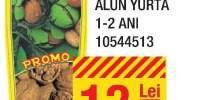 Pomi fructiferi castan, nuc, alun, Yurta