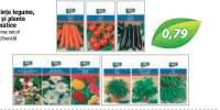 Seminte legume, flori si plante aromatice