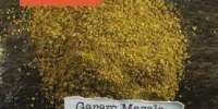 Garam masala seminte, Magazinul de Mirodenii