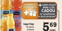 Cappy Pulpy suc