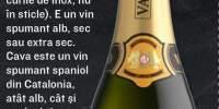 Vin spumant Prosecco Treviso Valdo