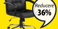 Skodsborg scaun de birou