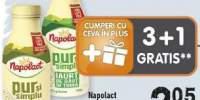 Napolact iaurt de baut/ lapte batut