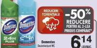 Dezinfectant WC Domestos