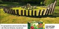 Ceai natural din 7 plante, Fares