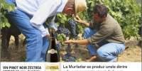 Vin Pinot Noir Zestrea Murfatlar rosu, demidulce