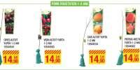 Pomi fructiferi 1-2 ani