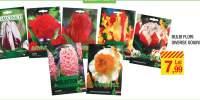 Bulbi flori diverse soiuri
